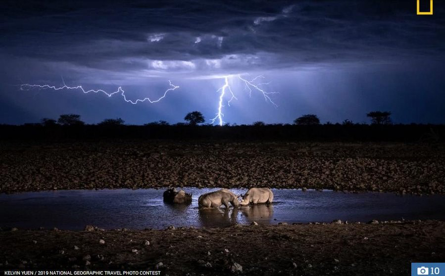 Incredible photo of rhinos facing off as lightening splits the sky
