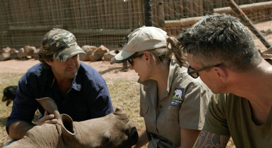 GOLDEN HOUR TO SAVE A BABY RHINO'S LIFE