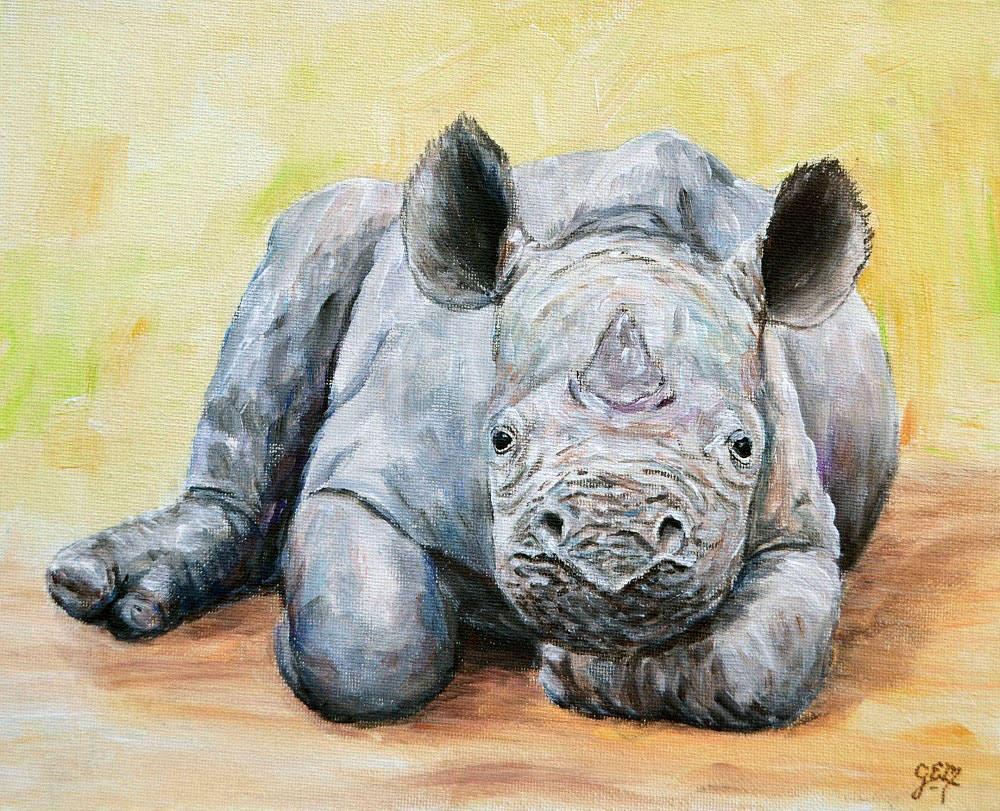 Sweet Baby Rhino